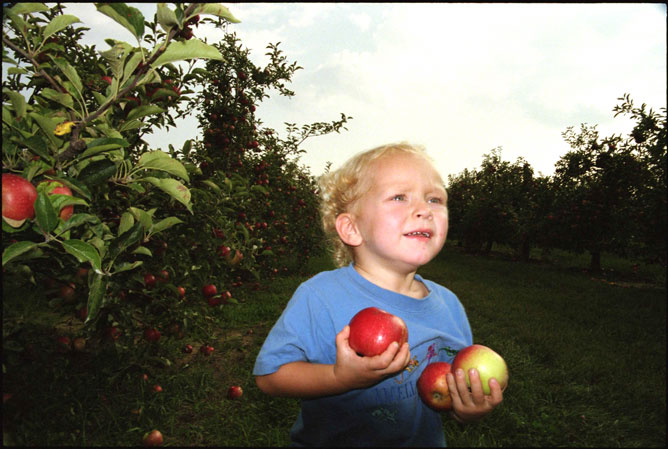 Boy with Apples=